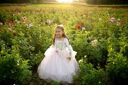Kolli: 1 Golden Rose Princess Dress, Size 7-8