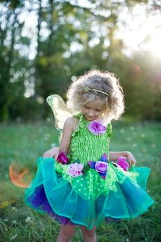 Kolli: 1 Fairy Blooms Deluxe Dress & Wings, Green, Size 3-4