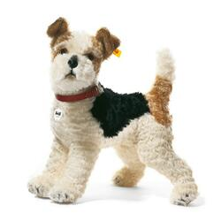 Kolli: 1 Foxy Fox Terrier, white/brown/black