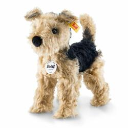 Kolli: 1 Terri Welsh Terrier, golden brown/black